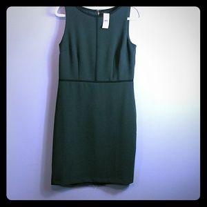 NWT Loft dress size 8